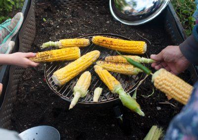 Mais og grilling, Foto: Thea Tønnessen